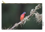 Painted Bunting Curiosity Carry-all Pouch