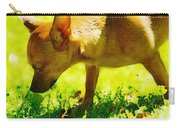 Painted Chihuahua  Carry-all Pouch