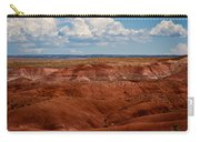 Painted Desert #4 Carry-all Pouch