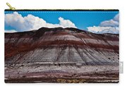 Painted Desert #5 Carry-all Pouch