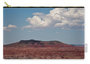 Painted Desert #8 Carry-all Pouch
