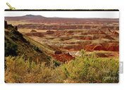 Painted Desert Panorama Carry-all Pouch