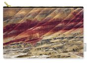 Painted Hills Contour Carry-all Pouch