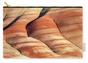 Painted Hills Stripes Carry-all Pouch