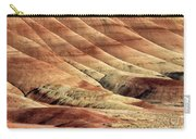 Painted Hills Textures Carry-all Pouch