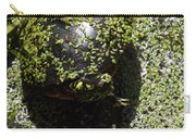 Painted Turtle Camouflague Carry-all Pouch