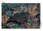 Pair Of Giant Moray Eels In Hole Carry-all Pouch