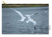 Pair Of Terns Carry-all Pouch