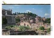 Palatine Hill  Carry-all Pouch