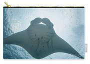 Palau, Manta Ray Carry-all Pouch