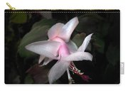 Pale Ballerina Carry-all Pouch