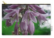 Pale Purple Starbursts Carry-all Pouch