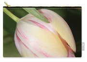 Pale Yellow And Pink Tulip Carry-all Pouch