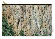 Palisades - Cimarron Canyon State Park - New Mexico Carry-all Pouch