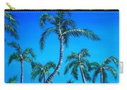Palm Tops Carry-all Pouch