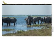 Panorama Of Elephant Herd Drinking From River Carry-all Pouch