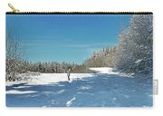 Panorama Of Winter Park Carry-all Pouch