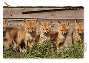 Panoramic Fox Kits Carry-all Pouch