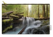 Panther Creek In Gifford Pinchot National Forest Carry-all Pouch