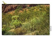 Papago Mountain Carry-all Pouch