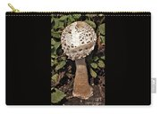 Parasol Mushroom           Macrolepiota Procera           August     Indiana   Carry-all Pouch
