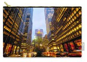 Park Avenue Nyc Carry-all Pouch