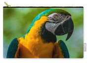 Parrot Face Carry-all Pouch