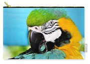Parrot Time 3 Carry-all Pouch