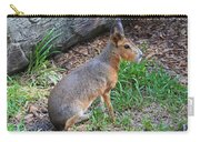 Patagonian Cavy IIi Carry-all Pouch