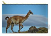 Patagonian Guanaco - Chile Carry-all Pouch