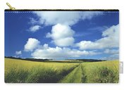 Path In A Countryside Carry-all Pouch