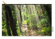 Path In Sunlit Forest Carry-all Pouch by Elena Elisseeva