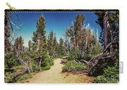 Path On Top Of Mt. Howard, Wallowa Or Carry-all Pouch