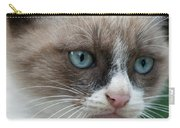 Pauls Little Cat Carry-all Pouch