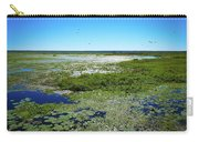 Paynes Prairie View Carry-all Pouch