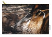Peaceful Dreams Carry-all Pouch