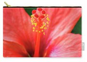 Peach Colored Hibiscus Closeup Carry-all Pouch