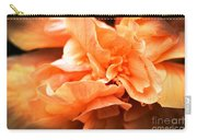 Peach Ripples Carry-all Pouch