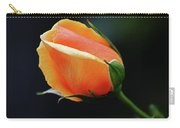 Peach Splendour Carry-all Pouch