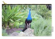 Peacock Landscape Louisiana  Carry-all Pouch