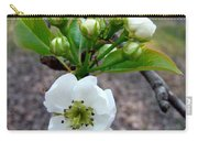 Pear Tree Blossom 3 Carry-all Pouch