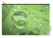 Pearls On Leaf 3 Carry-all Pouch
