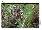 Peekaboo Lizard Carry-all Pouch