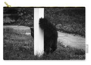 Peeking Kitty Black And White Carry-all Pouch