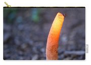 Peeping Red Eyed Fly Carry-all Pouch