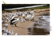 Pelicans At Pearl Beach 1.0 Carry-all Pouch