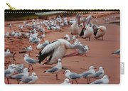 Pelicans At Pearl Beach 3.0 Carry-all Pouch