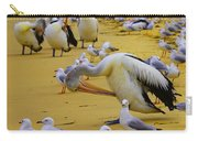 Pelicans At Pearl Beach 3.1 Carry-all Pouch