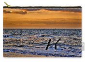 Pelicans Crusing The Coast Carry-all Pouch