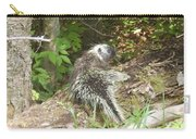 Pennsylvania Porcupine Carry-all Pouch